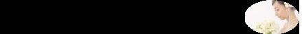 ブライダルプラン